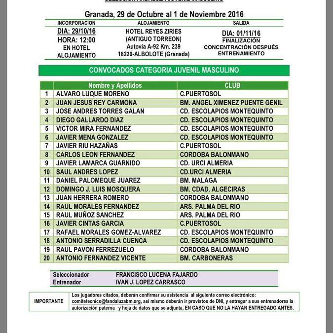 Importante presencia de Balonmano Montequinto en las convocatorias de las selecciones andaluzas juvenil, cadete e infantil